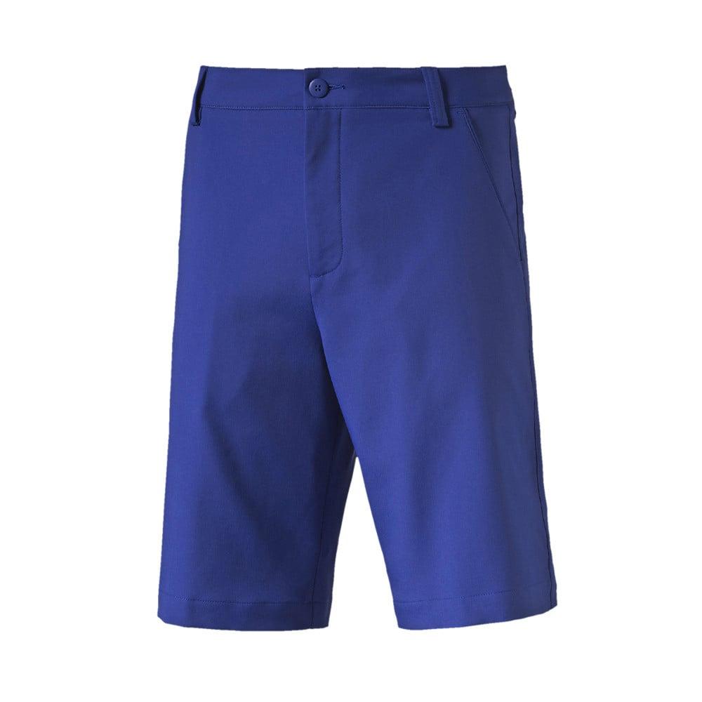 e67119eee050 Puma Golf Tech Shorts - Puma Golf Shorts